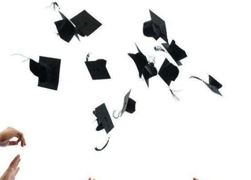毕业论文查重高重复率如何应对