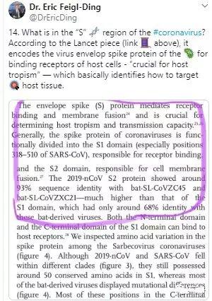 2019-nCoV表面的特异性糖蛋白机理